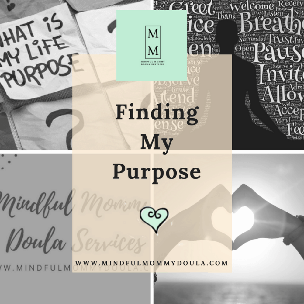 Final-Finding my purpose